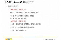 恩智浦LPC111X 系列微控器教程