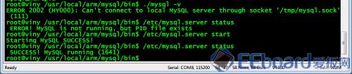启动MySQL数据库