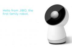 Jibo-1