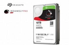 IronWolf Pro1