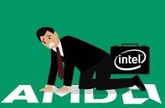 AMD003