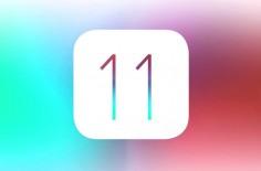 iBug11