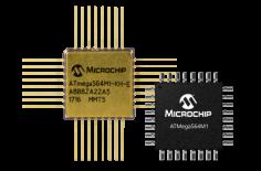 Microchip1