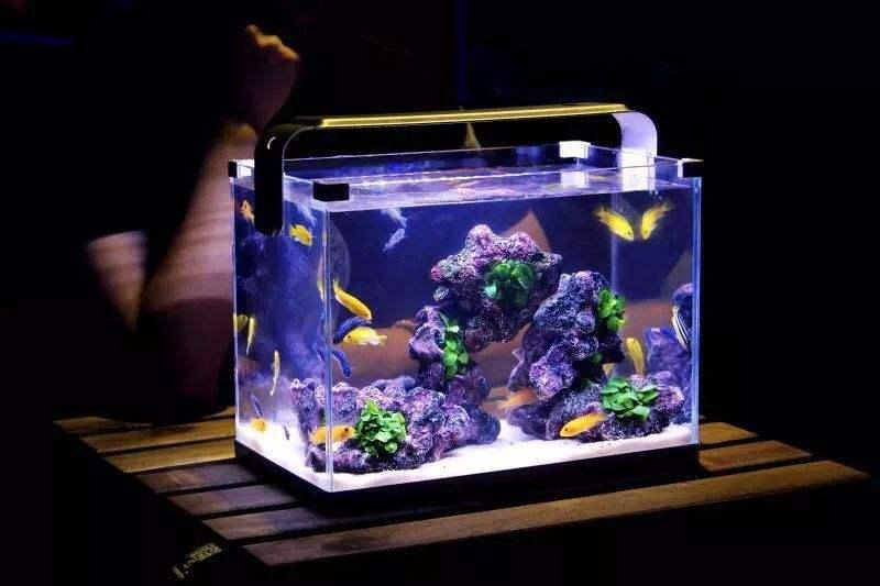 智能鱼缸的灯光效果以及音乐播放功能电路方案设计