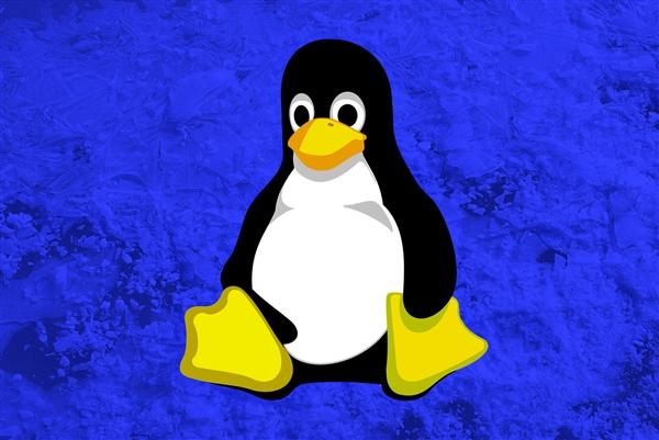 因为开源,Linux成为全球最重要的软件平台