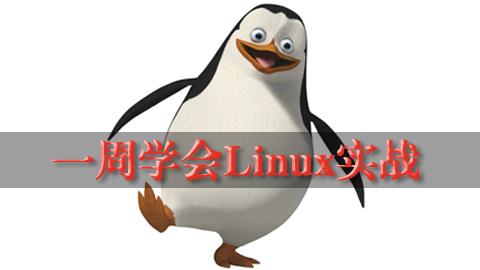 一周学会Linux实战